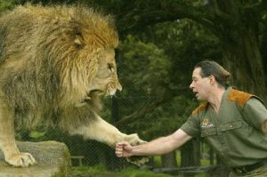 lion shake hand with man