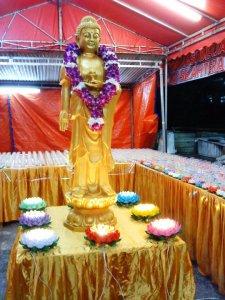 Medicine Buddha 2011 (6) Master Tony Chew